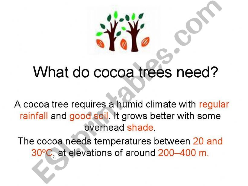 Cocoa trees powerpoint