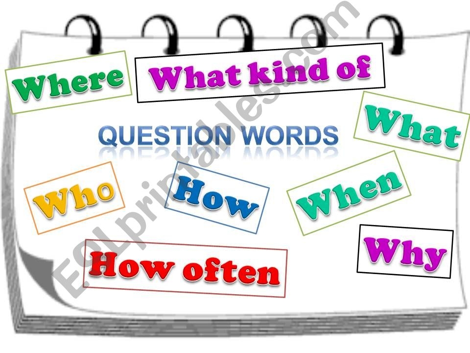 QUESTION WORDS. SIMPLE PRESENT.