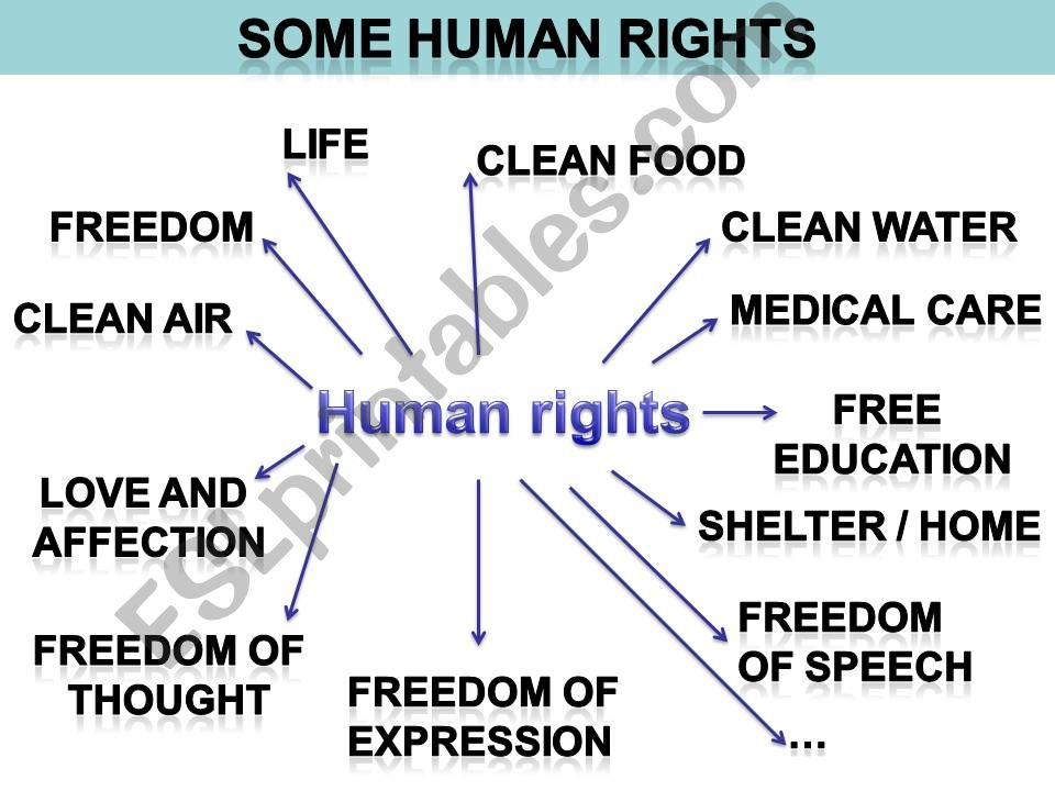 Human rights powerpoint