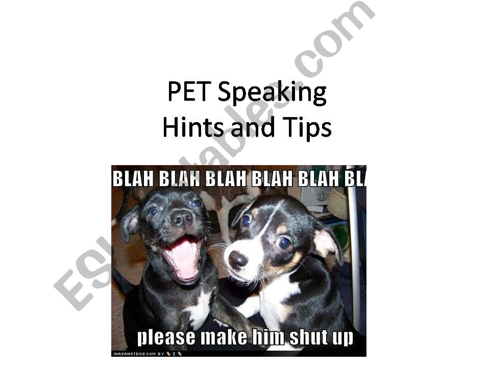 A few tips to help with the PET speaking exam