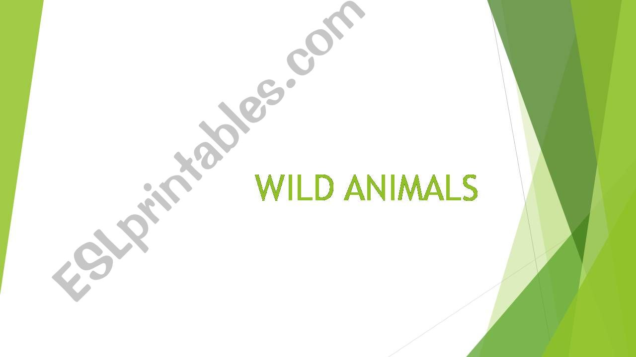 Wild Animals powerpoint