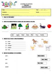 English Worksheet: TEST