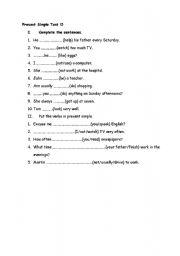 English Worksheet: Present Simple Test