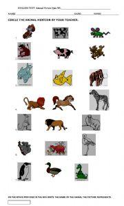 English Worksheets: Animal Unit