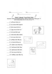English Worksheet: Baby Animals True/False Quiz