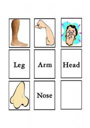 English Worksheets: Body parts matching 2