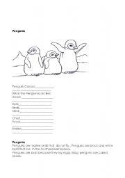 English worksheet: polar animals