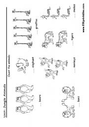 English Worksheet: Jungle animals: read and count