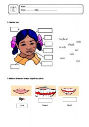 English Worksheets: The Body (Head)