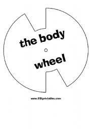 English Worksheets: The body wheel