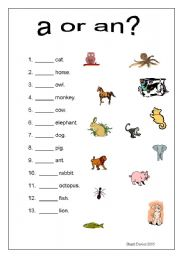A or an animals worksheet - ESL worksheet by stoodi