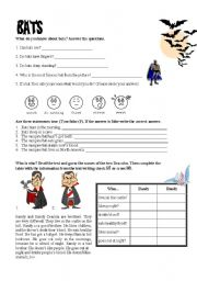 English Worksheets: Bats