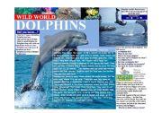 English Worksheet: Wild World - Dolphins