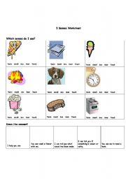 English Worksheets: 5 Senses Worksheet