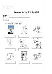 English Worksheets: in the forest