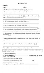 English Worksheets: the heart