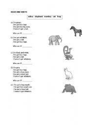 English Worksheets: Animals Matching Exercise