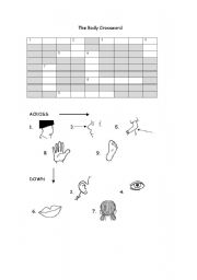 English Worksheets: THE BODY CROSSWORD