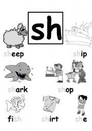 math worksheet : collection sh worksheets photos  studioxcess : Sh Worksheets For Kindergarten