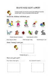 English Worksheet: Have you got a pet?