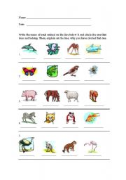 English Worksheets: Which animal does not belong?