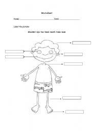 English Worksheets: My Body