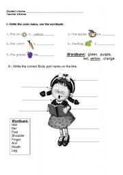 English Worksheets: INTRODUCTORY UNIT
