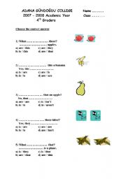 English Worksheets: That / this
