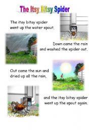 English Worksheet: the itsy bitsy spider