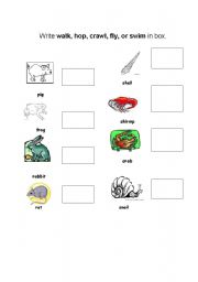 english worksheets animal movements. Black Bedroom Furniture Sets. Home Design Ideas