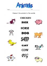 English Worksheets: Connect exercise-animals