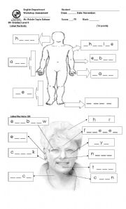 English Worksheets: body worksheet