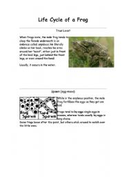 English Worksheet: Life Cycle of a Frog