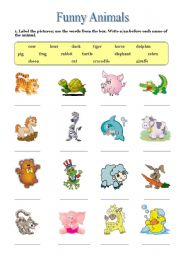 English Worksheets: Funny Animals