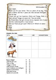 English Worksheet: A letter on pets