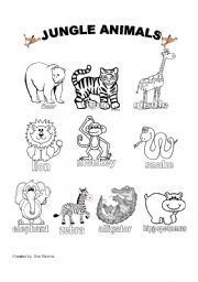 English Worksheet: Jungle Animals Worksheet #1