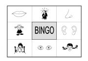English Worksheet: Bingo: parts of the face and feelings