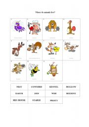 English Worksheets: Where do animals live?