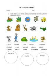 English Worksheets: MY PETS AND ANIMALS