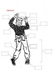 English Worksheets: THE BODY: VOCABULARY EXERCISE