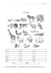 English Worksheets: 04 Elementary Animals