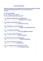 English Worksheets: ECHO QUESTIONS