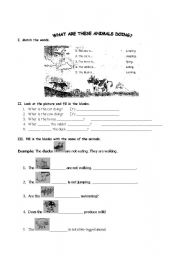 English Worksheets: What are these animals doing?