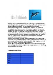 English Worksheets: Dolphins