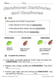 English Worksheets: What do animals eat?