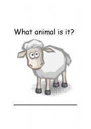 English Worksheets: Sheep
