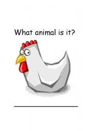 English Worksheets: Chicken