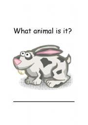 English Worksheets: Rabbit