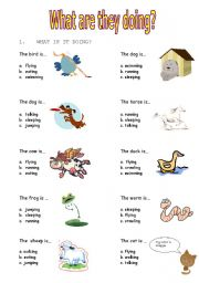english worksheets what are these animals doing. Black Bedroom Furniture Sets. Home Design Ideas