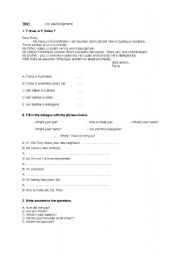 English Worksheets: Test for adults beginners